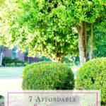 7 Affordable Landscaping Tips