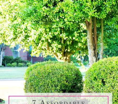 7 Affordable Landscaping Tips