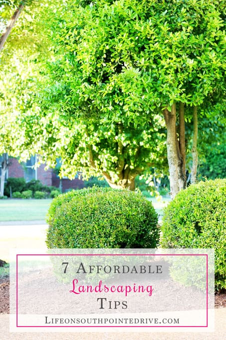 7 Affordable Landscaping Tips, landscaping tips, landscaping, landscaping on a budget, affordable landscaping