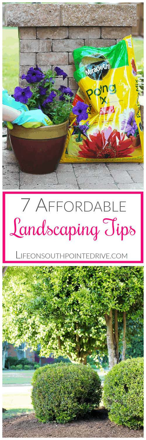 Home - 7 Affordable Landscaping Tips, landscaping tips, landscaping, landscaping on a budget, affordable landscaping